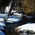 Snowy River by Belinda Olivastri