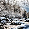 Snowy River  by Debbie Beck