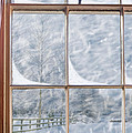 Snowy Window by Amanda Elwell