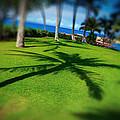 So Hawaiian... by Les Lorek