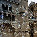 Soap-bubbles In Front Of An Ancient Cathedral by Karin Stein