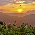 Soaring At Sunrise - Blue Ridge Parkway I by Dan Carmichael
