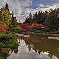Soaring Autumn Colors In The Japanese Garden by Mike Reid