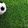 Soccer Ball On Green Grass by Sandra Cunningham