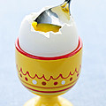 Soft Boiled Egg In Cup by Elena Elisseeva
