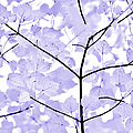 Soft Lavender Leaves Melody by Jennie Marie Schell