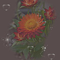 Soft Pastel Abstract Strawflowers Art Prints by Valerie Garner