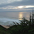 Soft Silvery Pacific Sunset by Susan Wyman