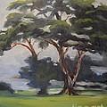 Soft Trees by Gail Heffron