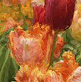 Soft Tulips by Paul W Faust -  Impressions of Light