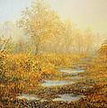 Soft Warmth by Kiril Stanchev