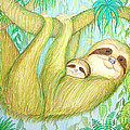 Soggy Mossy Sloth by Nick Gustafson