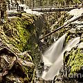 Sol Duc Falls by Heather Applegate