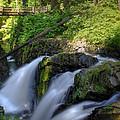 Sol Duc Falls by John Absher
