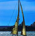 Solar Sail by Joe Geraci