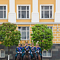 Soldiers Of The Presidential Regimental by Panoramic Images