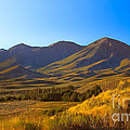 Solider Mountain Shadows by Robert Bales