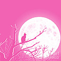 Solitary Pink Background by Methune Hively