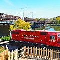 Solo Red Canadian Pacific Engine Along Rock River In Rockford by Jeff at JSJ Photography