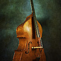 Solo Upright Bass by Eric Chegwin