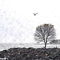 Somber Flight Wc by Jim Brage
