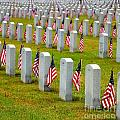 Some Gave All by Shannon Louder