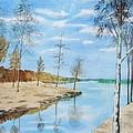 Somewhere In Dalarna by Martin Howard