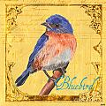 Colorful Songbirds 1 by Debbie DeWitt