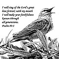 Songbird Drawing With Scripture by Janet King