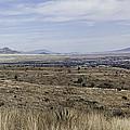 Sonoita Arizona by Lynn Geoffroy