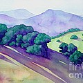 Sonoma Hills by Robert Hooper