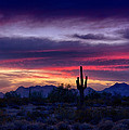 Sonoran Desert Skies  by Saija  Lehtonen