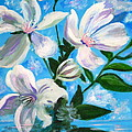 Soothing White Flowers by Phyllis Kaltenbach