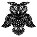 Sophisticated Owls 1 Of 4 by Kyle Wood