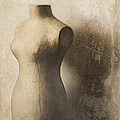 Sophistication by Amy Weiss