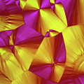 Sorbitol Crystals by John Durham
