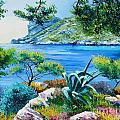Sormious Cove by Jean Marc Janiaczyk