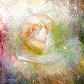 Soul Mate Rose by Carol Cavalaris