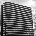Soutfield Round Hi Rise Black And White by Bill Woodstock