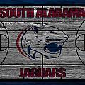 South Alabama Jaguars by Joe Hamilton