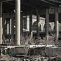 South Bronx Shanty Shacks - New York by Daniel Hagerman
