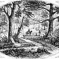 South Carolina Battlefield by Granger
