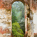 South Carolina Historic Church Photo Sheldon Ruins-- Another View From The Inside by Bill Swindaman