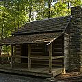 South Carolina Log Cabin by Chris Flees