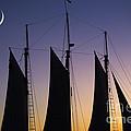 South Carolina Schooner Sunset by Dustin K Ryan