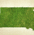 South Dakota Grass Map by Aged Pixel