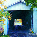South Denmark Rd. Covered Bridge by Gena Weiser