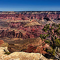 South Rim. Grand Canyon by Jennie Breeze