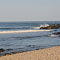 South Shore Of Long Island by Christy Gendalia