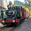 South West Wilderness Railway by Terry Everson